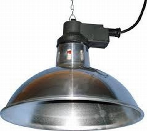 Intelec Traditional Overhead Heat Lamp (does not include Bulb)
