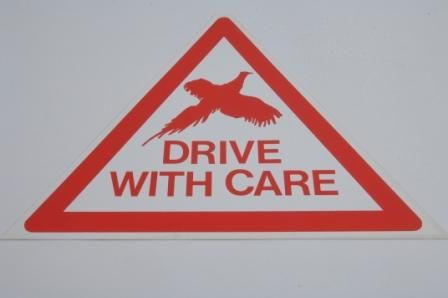 DRIVE WITH CARE (TRIANGULAR) SIGN